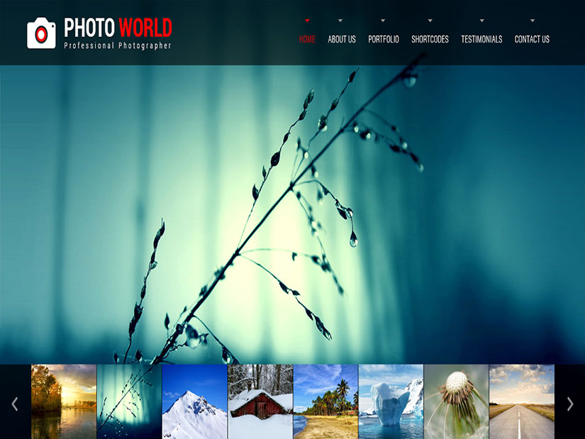 Photo World WordPress fotografía